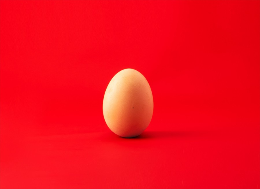 """Egg"" by Revolt on Unsplash"